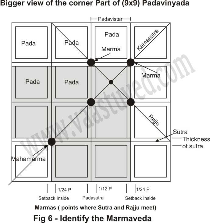 Identify the marmaveda